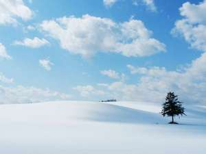 時間を忘れてしまうほど雄大な北海道の冬景色【富良野】
