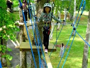 木から木へ空中散歩!【ツリーアドベンチャー】