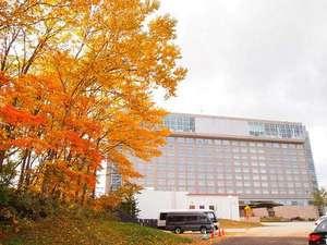 森に囲まれたホテルです。秋は一面見事な紅葉をご覧になれます。
