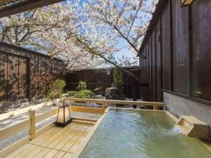 【露天風呂付客室】桜の時期は、露天風呂に入りながらお花見気分