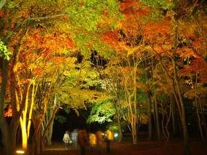 紅葉が彩る香雪園
