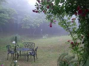 朝の霧に包まれた幻想的な庭