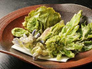 山菜の天ぷら。春ならではの美味しさですね♪