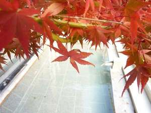 展望露天風呂と紅葉