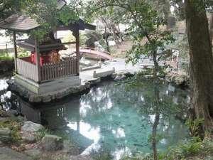 パワースポットで人気の霊泉泉が森。国内最古5億1000年前の日立カンブリア紀地層からの湧水は必見。1㎞先