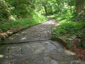 大神山神社へ続く日本一長い自然石の石畳の道です。