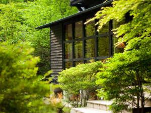 forest inn BORN [ 大分県 由布市 ]  湯布院温泉