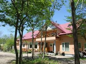 新緑が映える木立に囲まれて佇む可愛い建物