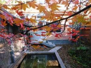 紅葉の露天風呂。清涼な空気と鮮やかな彩りに包まれて自然を満喫できます。