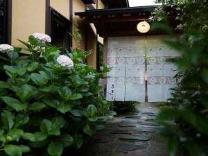 6月には、玄関入口の紫陽花が色とりどりに咲いてます。