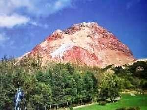 特別天然記念物に指定されている昭和新山