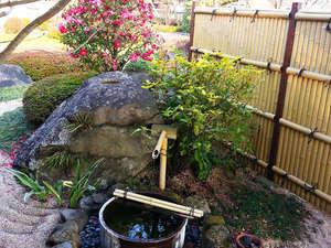 四季の移ろいを感じていただける当館のお庭☆こころ落ち着くひとときです。。