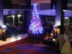 今年もロビーに登場(*´∀`*)ノ。+゚ *。 高さ5mのクリスマスツリー♪♪