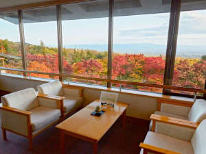 深緑や紅葉など美しい自然を感じ、癒される空間