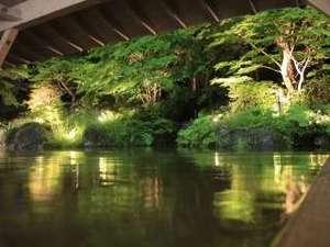 【雫石高倉温泉(夏)】夜のライトアップ。