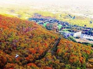 秋の紅葉ロープウェー