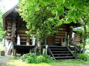 グランドカバーが綺麗に成長して・・ログハウスの玄関♪