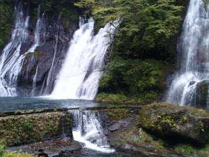 車で15分の白水の滝 豪快な水しぶきとマイナスイオンが涼しい~♪