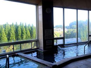 大浴場からの眺望。森の木々が癒しをくれます