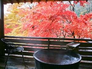 温泉記者によると、ここまで紅葉が楽しめるお風呂は珍しいとの事(貸切風呂) 紅葉の見頃は例年11月中旬頃