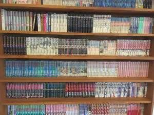 漫画本は2000冊以上!眠れないかも!