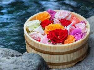 鮮やかな薔薇野天婦人風呂