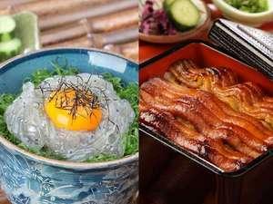 湯浅産『生しらす丼』と、有田産『たち重』(太刀魚蒲焼き丼)