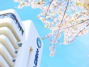 【桜咲く】受験生のみなさまが良い結果を残せますように!※写真はイメージです。