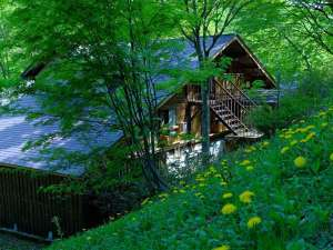緑に囲まれた木造りのペンション
