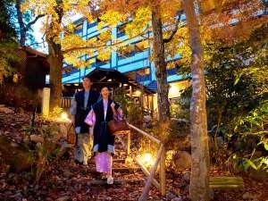 東屋につづく中庭の小道。思わず深呼吸したくなる箱根の自然が、眼前に広がる。