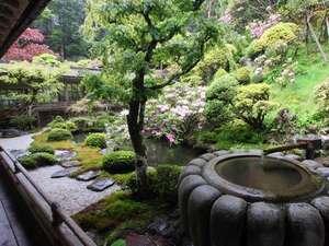 趣あるつくばいが置かれた庭園。四季の移ろいを感じます
