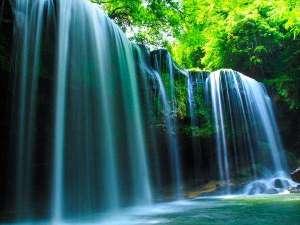 【鍋ヶ滝】マイナスイオンを全身に浴びて水のカーテンに心癒されるひととき。滝の裏側を歩くこともできます