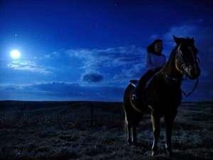 【乗馬体験】「星空乗馬」は馬の背に揺られて進みながら夜空に輝く星々を存分に眺める夏だけの贅沢体験
