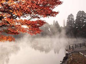 深秋の金燐湖。【見頃は11月~】金燐湖から湧き上がる湯気は幻想的。特に明け方がオススメ。