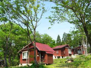 富山県立山山麓家族旅行村の画像