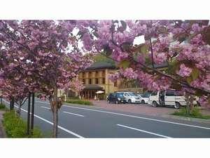 洞爺山水ホテル 和風 [ 虻田郡 洞爺湖町 ]  洞爺湖温泉