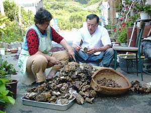 主人と女将でとれた貝の仕分けをしています。