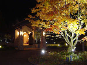 キラキラ輝くシンボルツリー