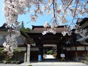宿坊 桜池院
