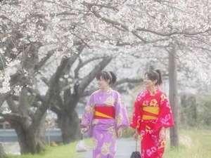 【春】情緒ある温泉街の風景と、桃色の桜が、なんとも言えないコントラストを生み出します!