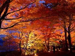 山中湖畔の紅葉まつり