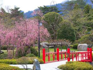 庭園にかかる「出逢い橋」人気の記念撮影スポットです。
