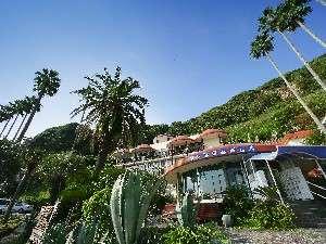 自然に囲まれた絶景露天の宿 ジャングルパレス の画像