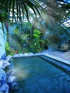 ホテルジャングルパレス   人気のジャングル風呂