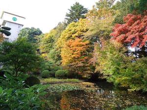 *日本庭園(秋)/約4500坪に彩られる木々や草花。四季ごとに違う表情を見せる景観に魅了されます。