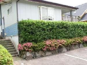 貸別荘 クオーレ:写真