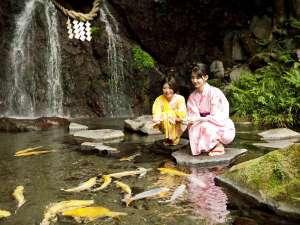 ◆玉簾の瀧◆滝つぼには鯉。のんびり癒しの休日を。