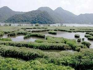 この風景が目の前に!川畔にはコウノトリが舞い降りることも♪
