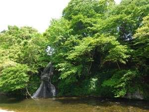 対岸の「白糸の滝」