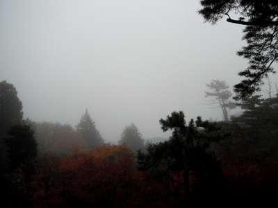 箱根 の 天気 予報
